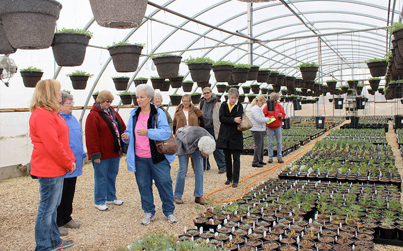 Educational Speaking in Greenhouse