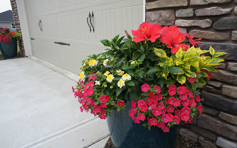 Grab and Go Planters and Baskets