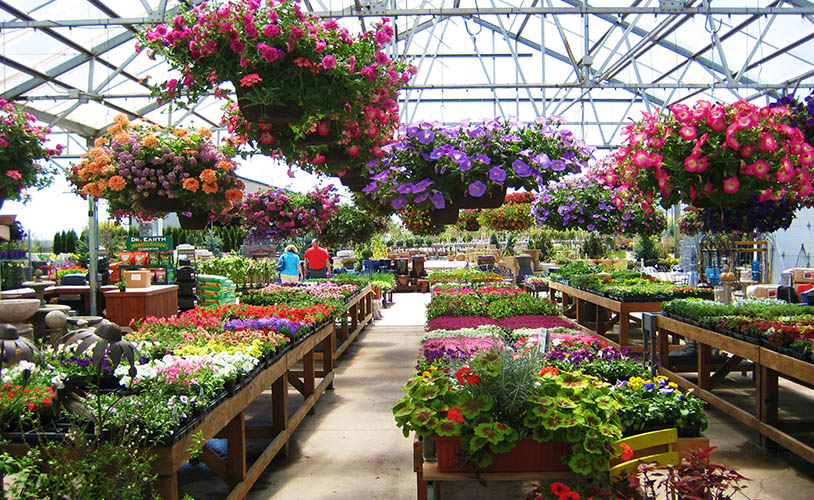 culver 39 s lawn and landscape garden center and giftshop greenhouse and nursery