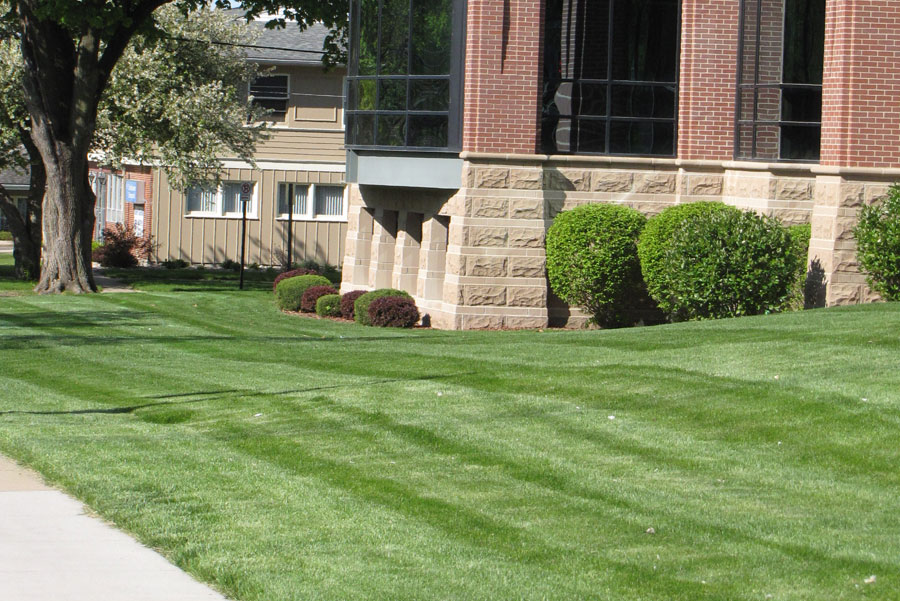 fertilizing and weed control service